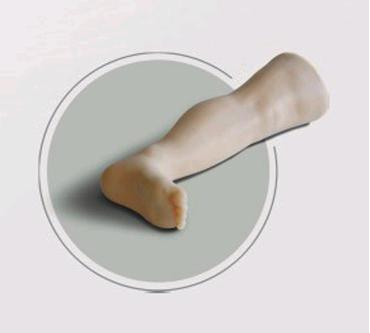 骨穿皮肤层次结构图